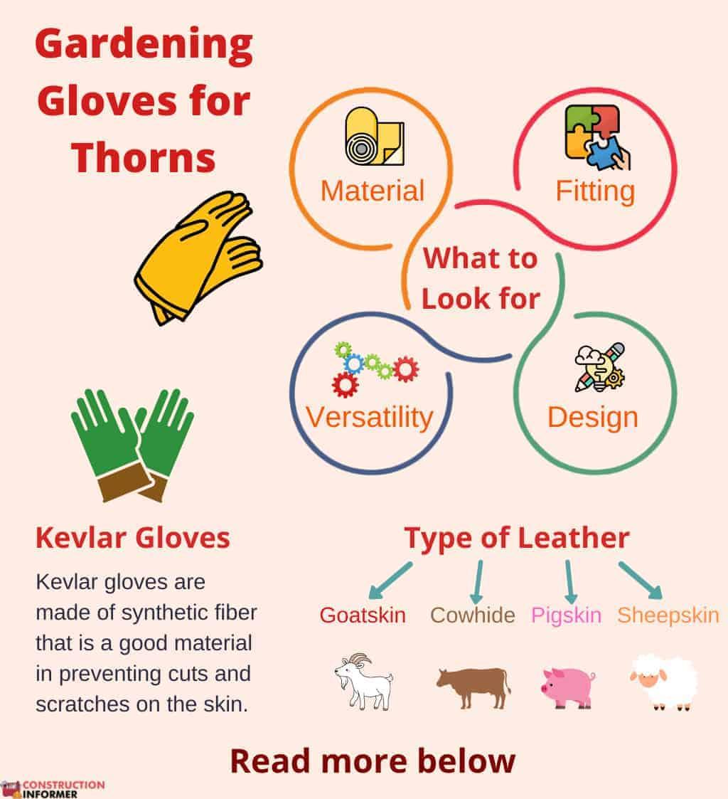 gloves-for-blackberry-bushes