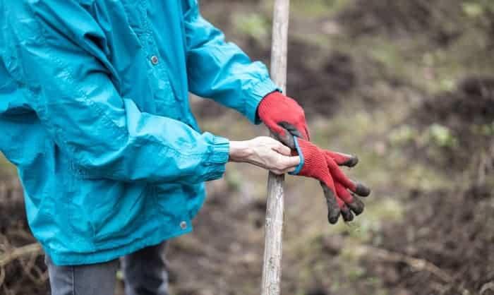 best-lightweight-gloves
