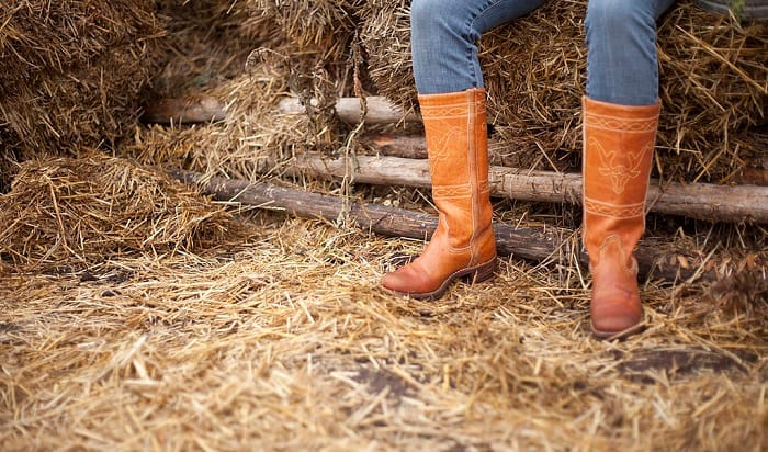 justin-vs-ariat-boots